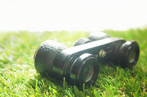 Binoculars and lawn