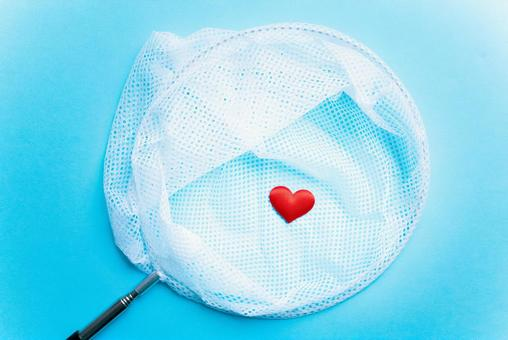 Heart mark and insect catching net