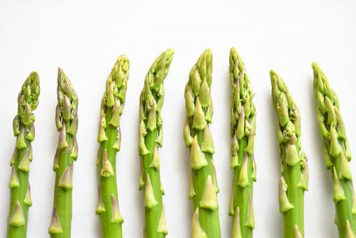 Aligned asparagus (white background)