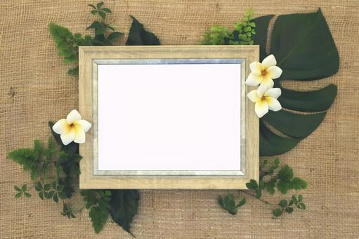 Botanical Frame (PSD)