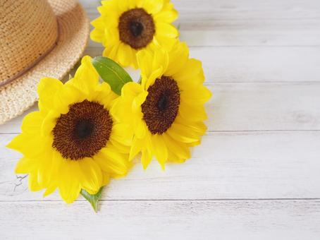 Summer image wallpaper sunflower and straw hat 1