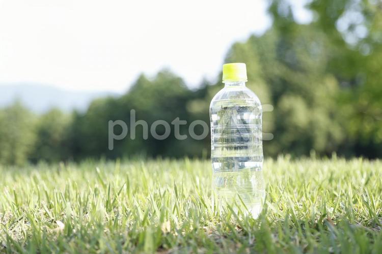 飲物10の写真