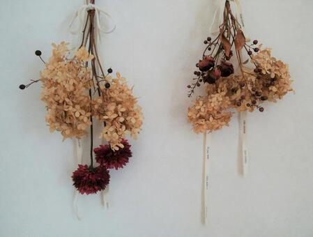 말린 꽃, 장미, 애나벨, 인테리어