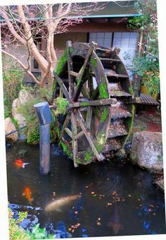 苔蘚水車休息