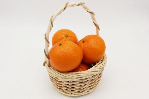 Freshly picked oranges
