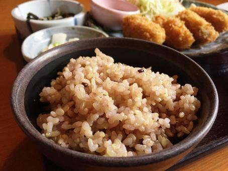 잡곡 쌀의 점심