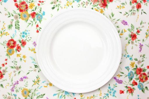 White dish 1