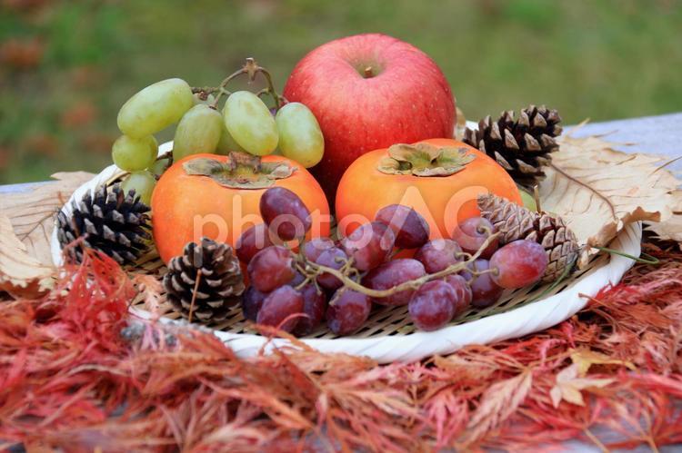 秋のフルーツ2の写真