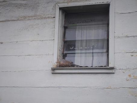 塞舌爾私人住宅和燕窩