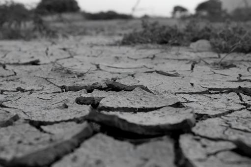 Black and white dry ground