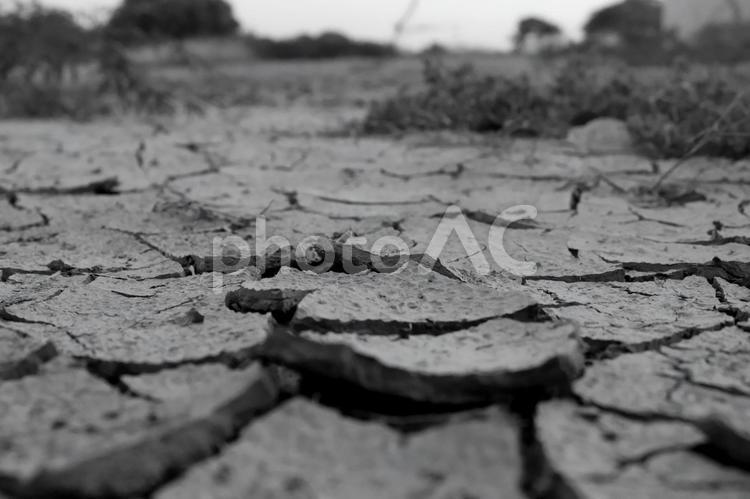 白黒 乾燥した大地の写真