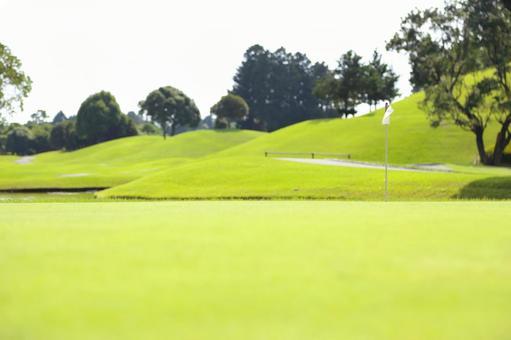 골프장 36