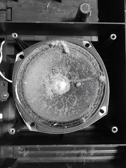 多灰塵的抹黑揚聲器黑色和白色