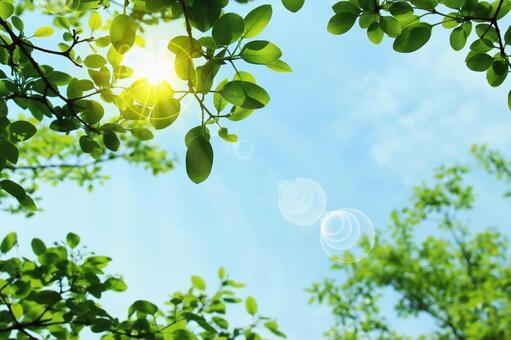 Summer sky and ultraviolet image