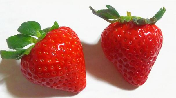 Fruit 33 (Strawberry / Koi Minori)