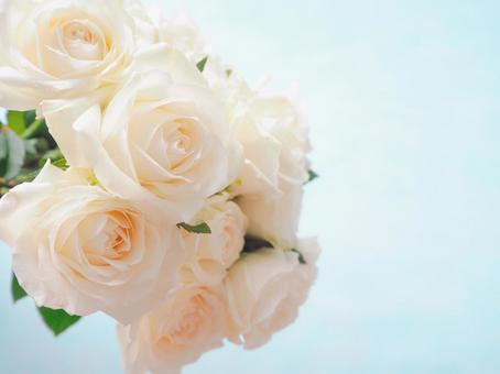 Bouquet of white roses