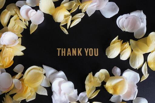 [Message] Thank you & rose petals b