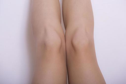 여성의 다리 10