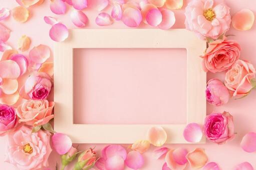 明亮的粉紅色玫瑰花瓣框架