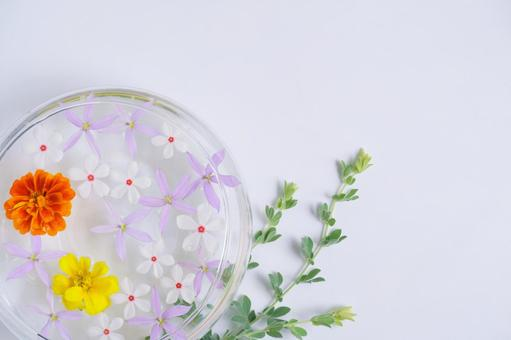 Floating flower with vitamin color