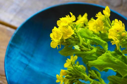 Rape blossoms and blue plate
