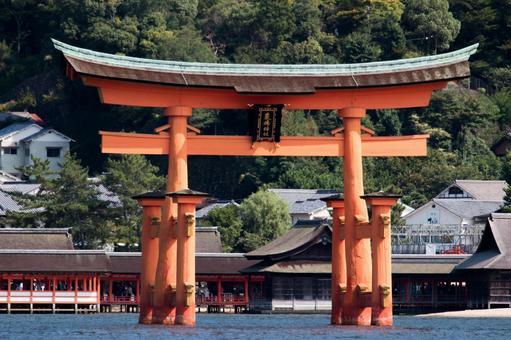 嚴島神社Otorii