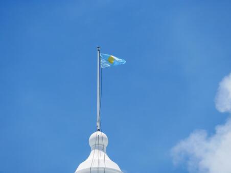 Flag of Republic of Palau
