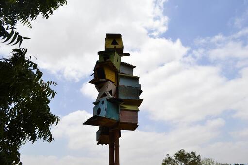 Colorful hive box