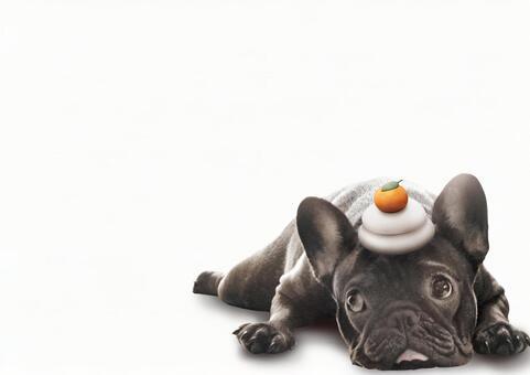Kagami Mochi French Bulldog psd background white