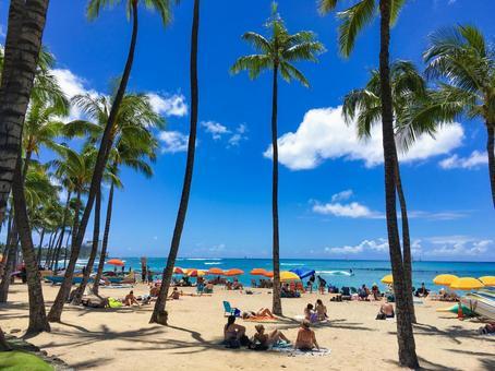 Hawaii Waikiki Beach