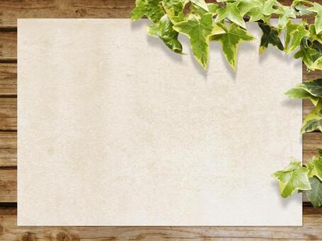 木紋和日本紙紋理和植物背景水平位置材料