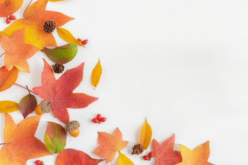 Frame of fallen leaves, pine cones and autumn fruits