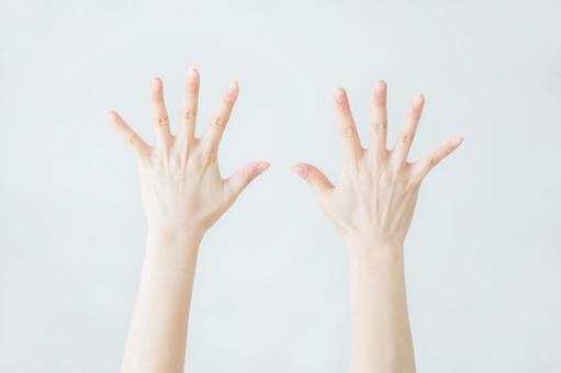 [절취 경로 포함] 손등