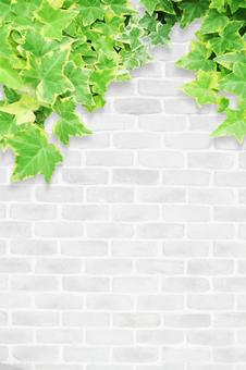 White wall and green