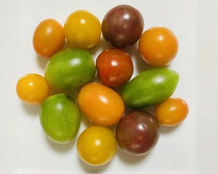 Color tomato (9)