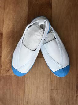 Indoor shoes (shoes)
