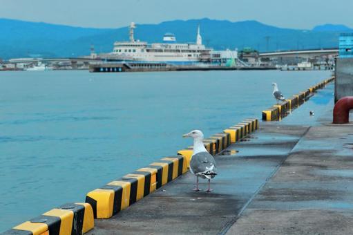 函館、港の風景