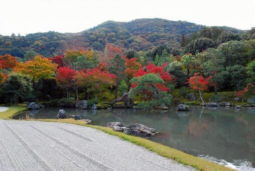 胜山和秋葉