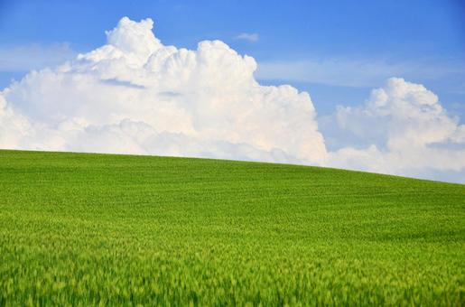 푸른 하늘과 흰 구름과 초원 3