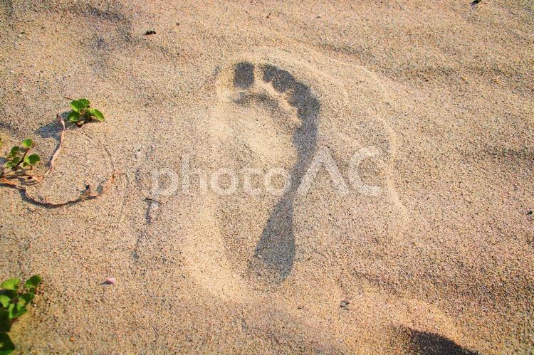 足跡の写真