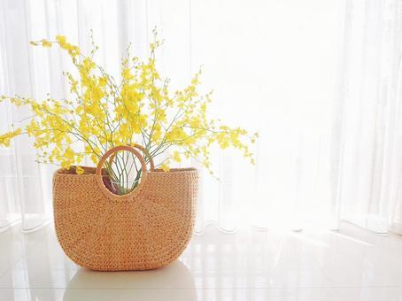 Oncidium flowers on the windowsill Morning light