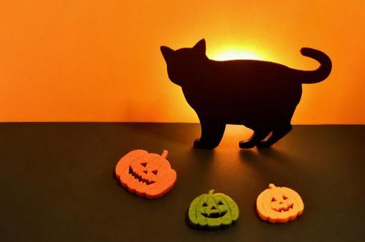 Halloween / miscellaneous goods / events
