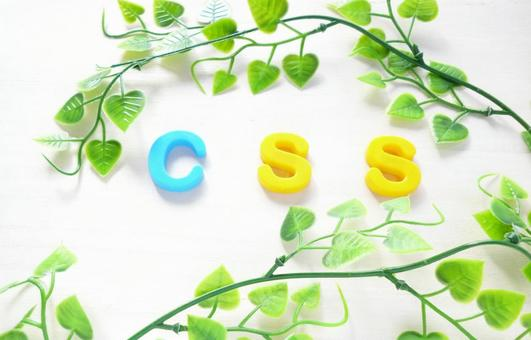 CSS [Text material]