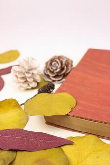 수첩과 낙엽 5