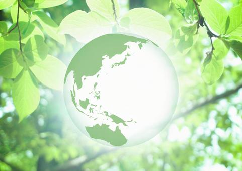 Green Earth Eco World Map