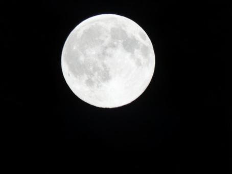 Age 15.9_Full Moon_Wolf Moon_January 2021_2