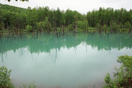 푸른 연못 2