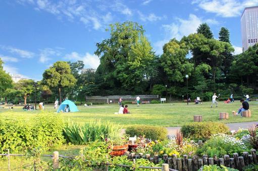 A peaceful park holiday