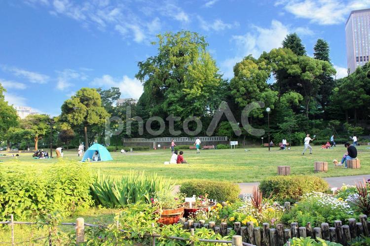 のどかな公園の休日の写真