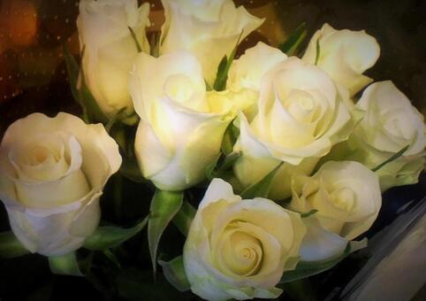 흰 장미 꽃다발